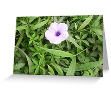 Delicate Tiny Pink Flower Greeting Card