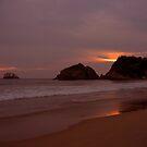 Zipolite Sunset by Janice Dunbar