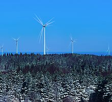 Windfarm Debate by Joseph T. Meirose IV