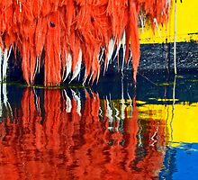 Colors and Reflections by cclaude