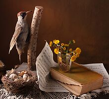 Still Life with woodpecker  by vaskoni