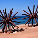 Sea Urchins by Justin Baer