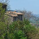Italian Cottage in Sgurgola Italy by Warren. A. Williams