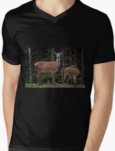 Red Deer Doe And Fawn Mens V-Neck T-Shirt