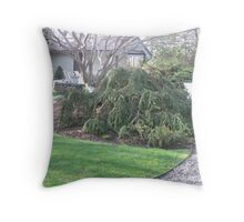 The Beauty of the Spring View to the Poolhouse Throw Pillow