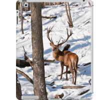 Red Deer in Forest iPad Case/Skin