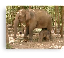 """""""Mother and Baby"""" Canvas Print"""