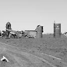 Devastation  by demie allen