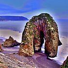 Nature... bizarre... Chile... by Daidalos