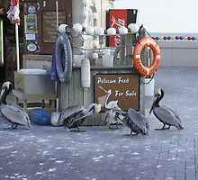 Pelican Food by Laurie Perry