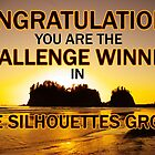 sihouettes winner banner by dedmanshootn
