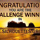 sihouettes winner banner by dedmanshootn