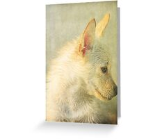 We Miss You Cooper Greeting Card