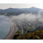 Killiney Hill Dublin Ireland by Brian  Dwyer