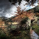 The Fence and the Stream by damien-c