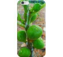 Fig Fruits iPhone Case/Skin