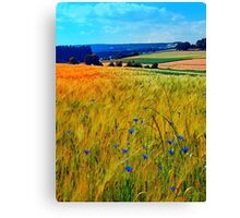 Fields of summer with flowers and scenery Canvas Print