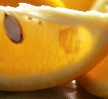 Lemons by Kate Hurley