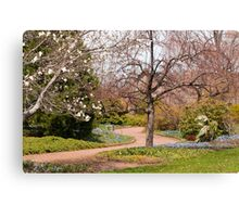 Alone in the Garden Canvas Print