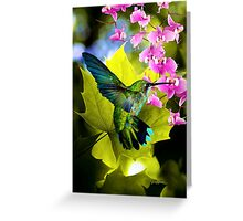 THE HUMMING BIRD, by E. Giupponi Greeting Card