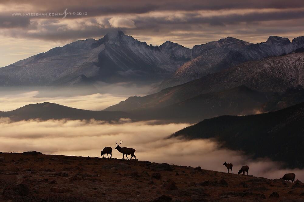 Dawn of Winter by Nate Zeman