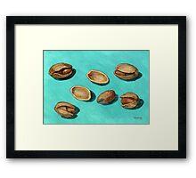 stash of pistachios Framed Print