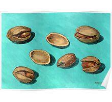 stash of pistachios Poster