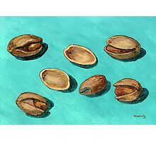 stash of pistachios Photographic Print