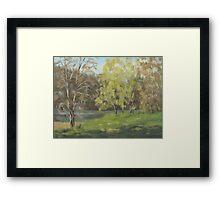 River Forks Spring 2 Framed Print