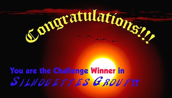 Silhouettes  Challenge winner Banner by the57man