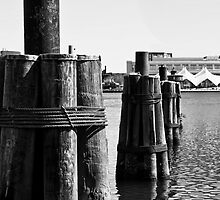 The Baltimore Inner Harbor by freshcolor