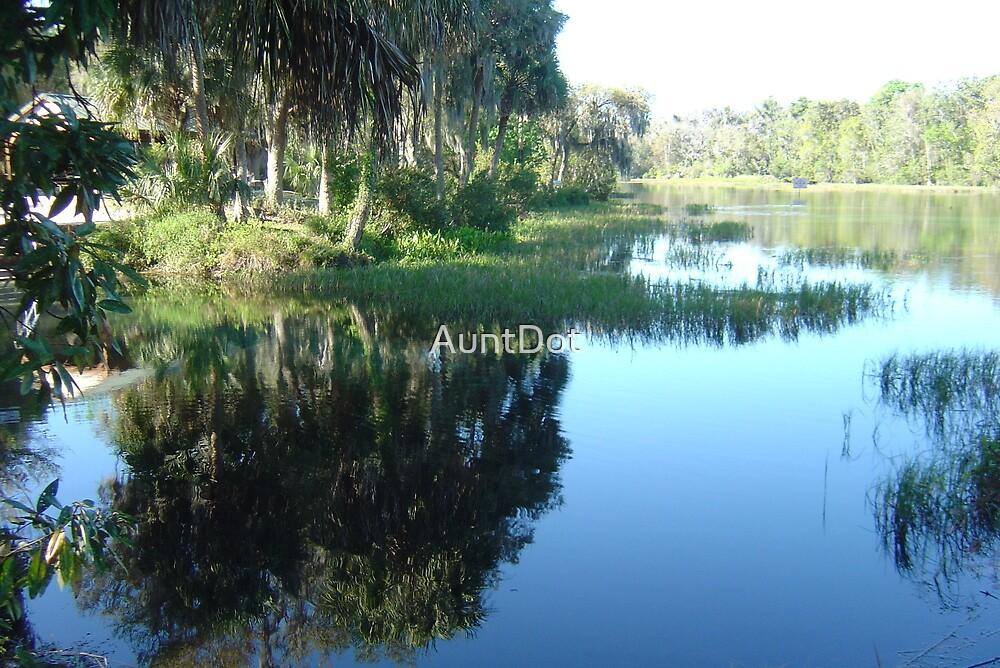 Rainbow River ~ Dunnellon, Florida by AuntDot