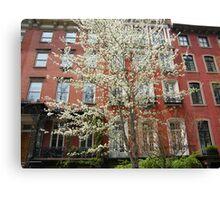 Colorful Spring Flowers, New York City, Gramercy Park Canvas Print