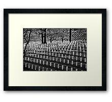 Freedom's Price Framed Print