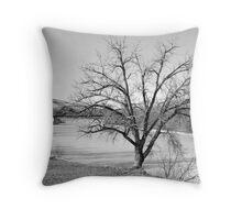 The Frozen Sun - Great Falls, Montana Throw Pillow