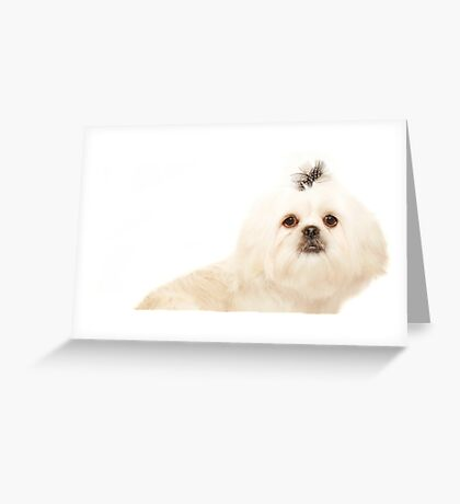 Purity Greeting Card