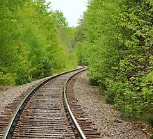 Tracks Leading to Onawa Trestle by RoyceRocks