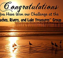 beaches, rivers, and lake treasures banner by the57man