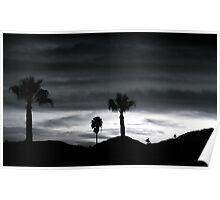 California Sunset Palm Poster