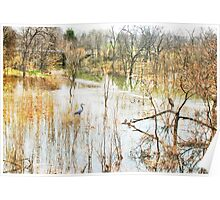 Flood Season Poster