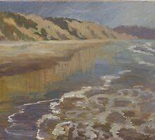 Blacks Beach by Robert  Ferguson