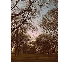 Washington Park   Photographic Print