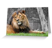 I Rule The Kingdom! Greeting Card