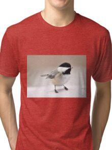 Black-capped chickadee Tri-blend T-Shirt