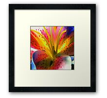 Outlandish Lilly Framed Print