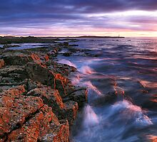 Spring Light - Moray by Jim Robertson