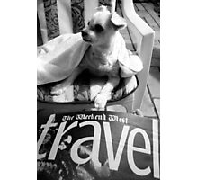 Destinations for dogs Photographic Print
