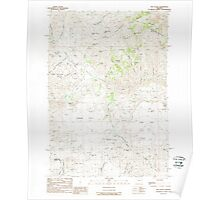 USGS Topo Map Oregon Rye Valley 281345 1988 24000 Poster