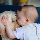 Dog Whisperer by daveharrisonnet