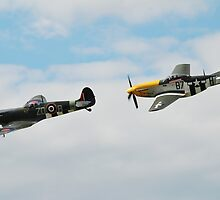 Mustang and Spitfire formation by David Fowler
